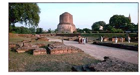 Sarnath Stupa Grounds